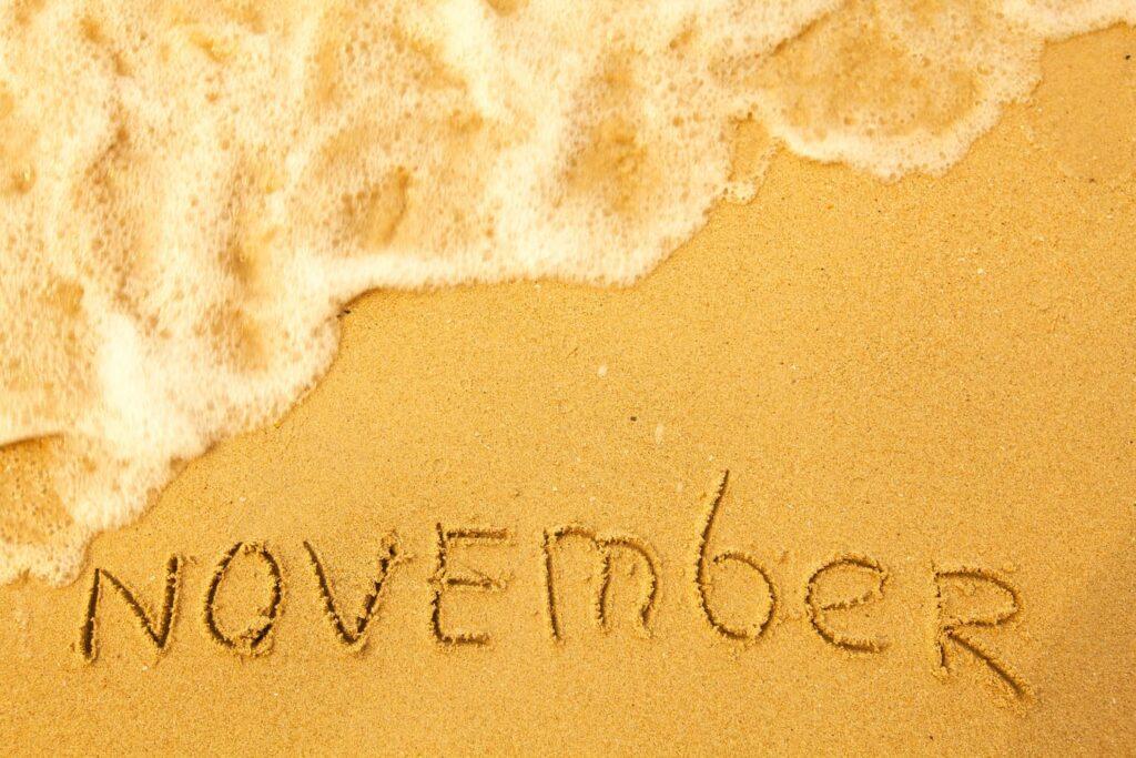 International Days November