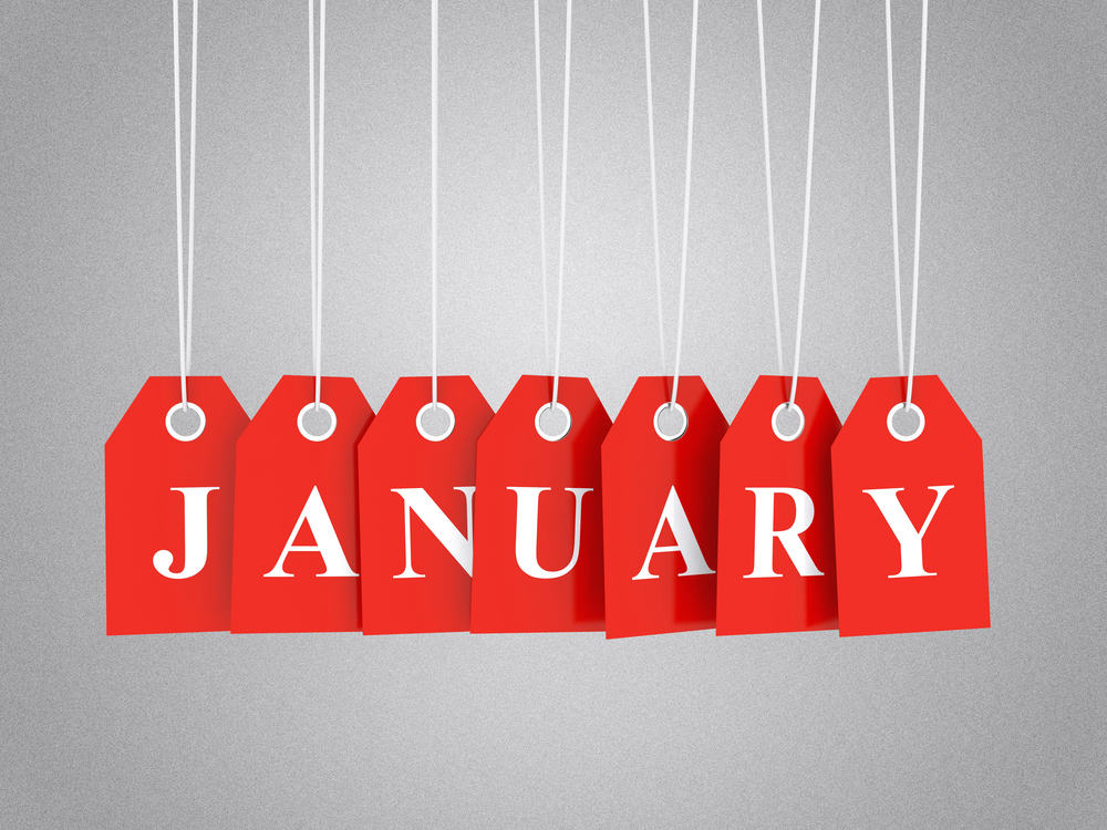 International Days for January